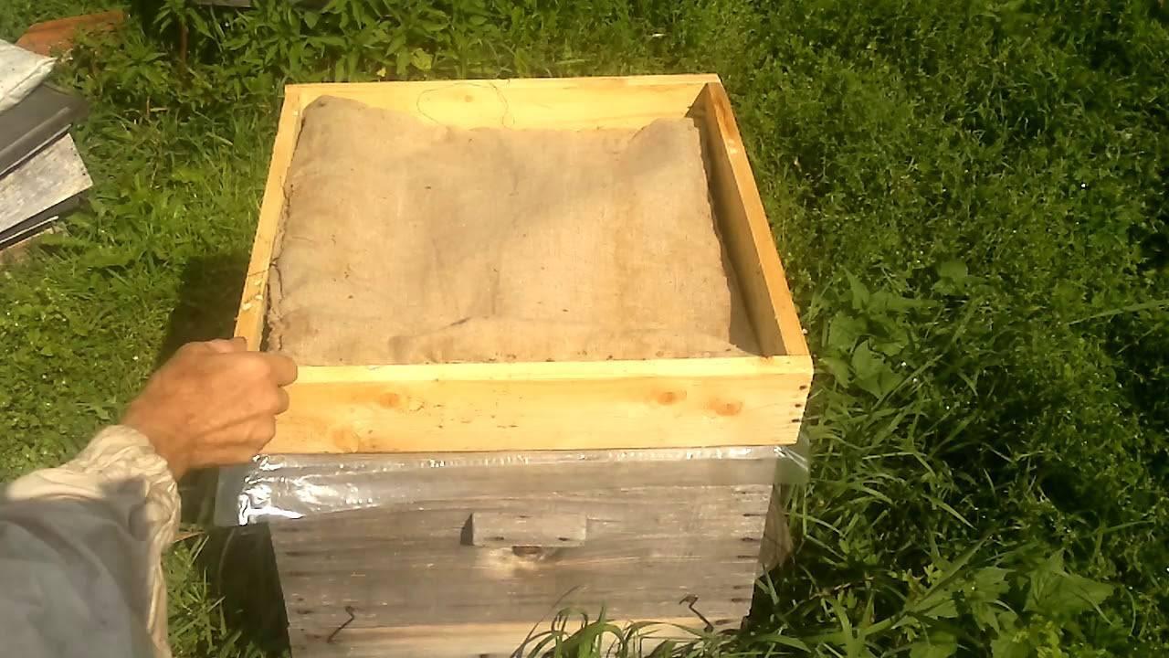 Фумисан для пчел