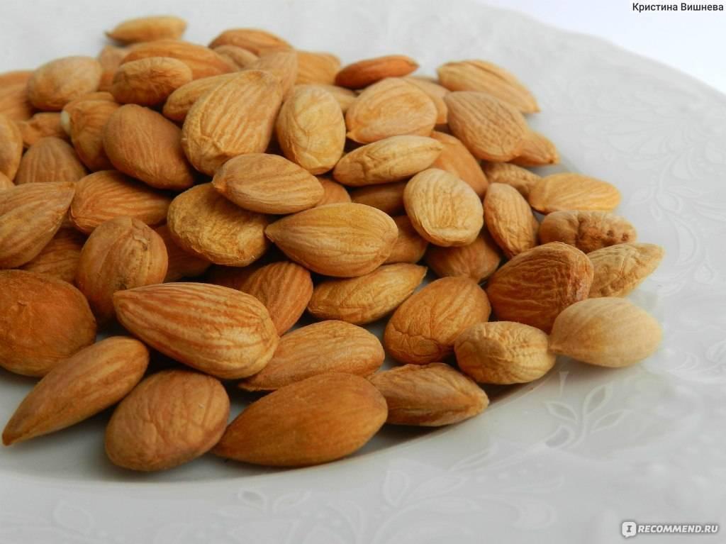 Косточки абрикосов: польза и вред