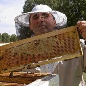 Как сделать отводок пчел | практическое пчеловодство