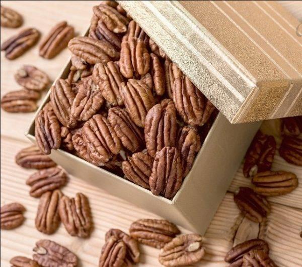 Пекан обыкновенный или кария– чудо-орех из северной америки
