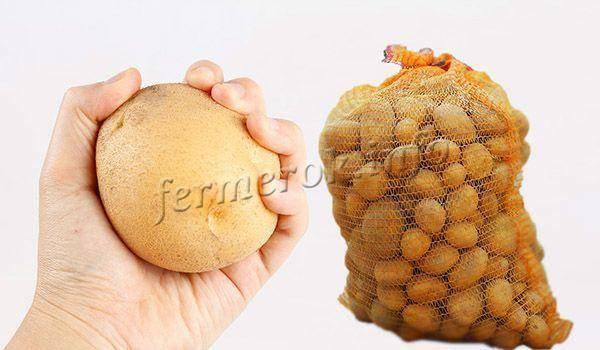 Картофель тулеевский характеристика сорта отзывы вкусовые качества