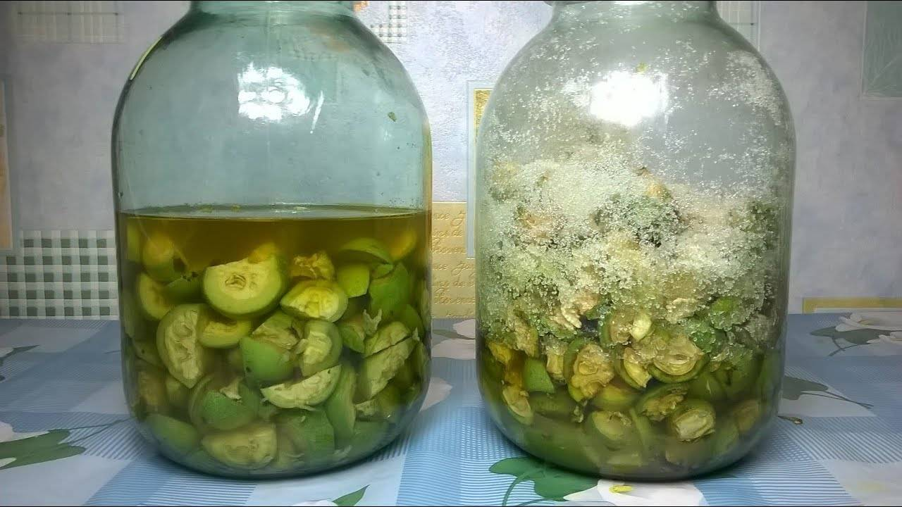 Маньчжурский орех лечебные свойства настойка