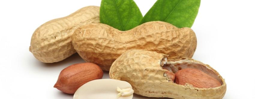 Интересные факты об арахисе