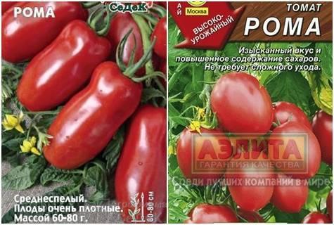 Описание сорта томата рома, выращивание и уход
