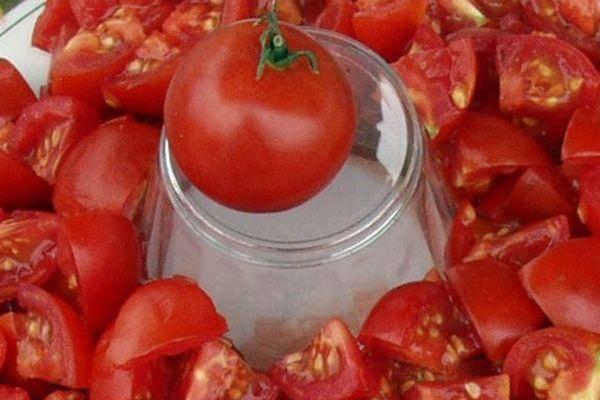 Вкусный сорт с долгим плодоношением — томат алтайский розовый: отзывы и фото урожайности