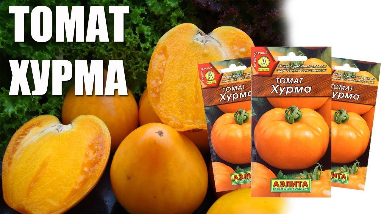 Томат гигант лимонный: фото + отзывы