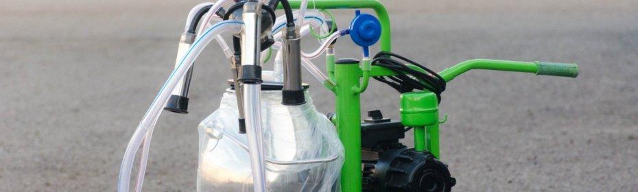 Домашний доильный аппарат для коров: советы по выбору и отзывы