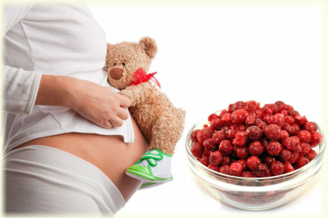 Применение брусники для снятия отечности во время беременности