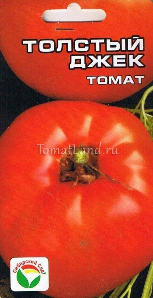 Толстый джек: описание сорта томата, характеристики помидоров, посев