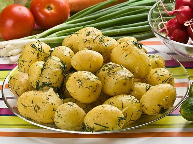 Картофель пикассо: описание и характеристика, отзывы
