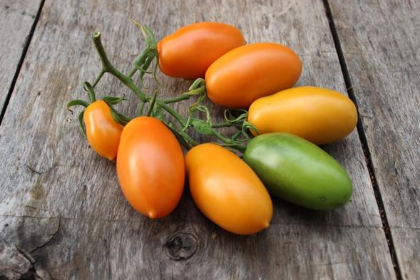 """Томат """"банан красный"""": описание сорта, фото, а также описание и характеристика плодов, регионы выращивания, схема посадки, урожайность помидор"""