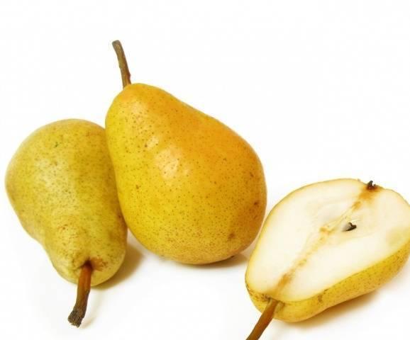 Разновидности высокоурожайного сорта груши дюшес