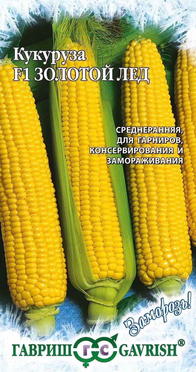 Посадка кукурузы и уход за ней
