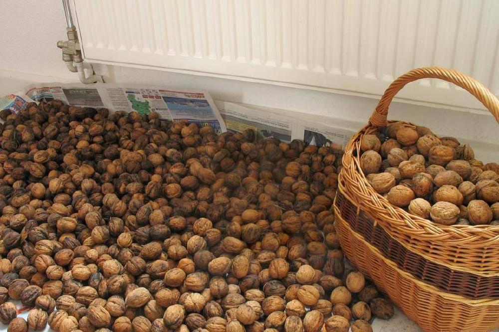 Как чистить кедровые орехи от скорлупы в домашних условиях