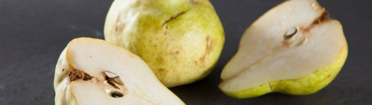 Груша пакхам: описание сорта, страна-производитель, пищевая ценность, состав и полезные свойства плодов, продолжительность хранения, отзывы