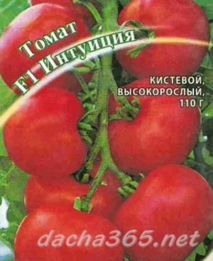 Томат интуиция f1 — описание сорта, фото, урожайность и отзывы садоводов