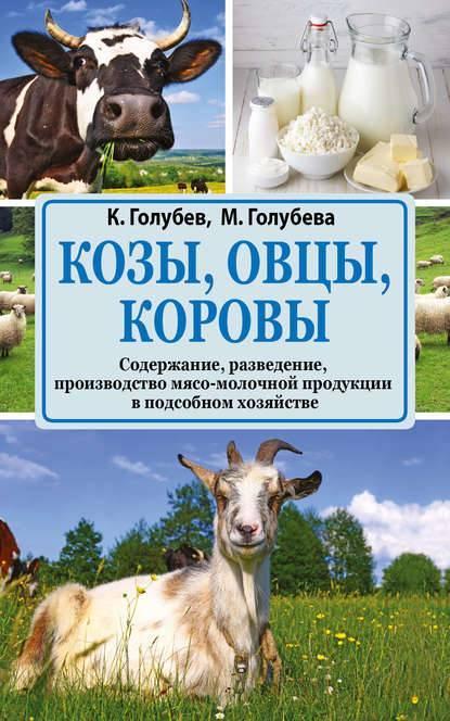 Разведение крс: выращивание коров и телят в домашних условиях, ветеринарно-санитарные правила