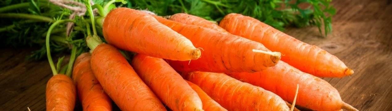Отличные способы хранения моркови на зиму. советы опытных огородников