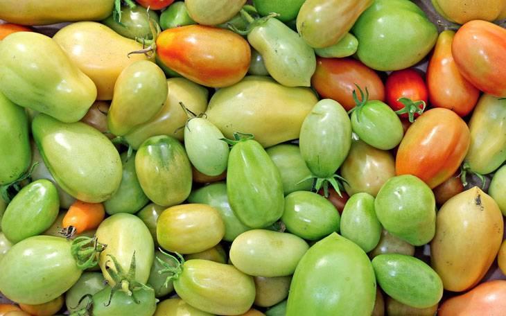 Как хранить зеленые помидоры до покраснения дома