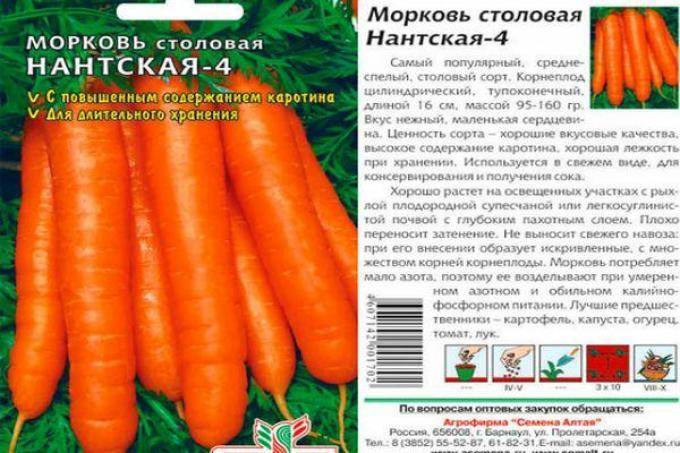 Характеристика моркови сорта каротель