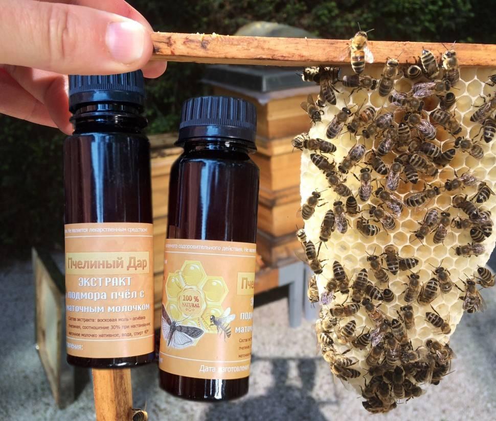 Подмор пчелиный рецепты для суставов