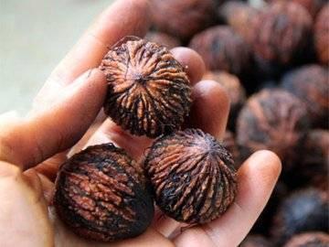 Применение настойки черного ореха