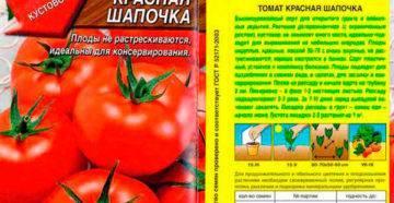 Помидоры красная шапочка – лучший сорт для ранних летних салатов