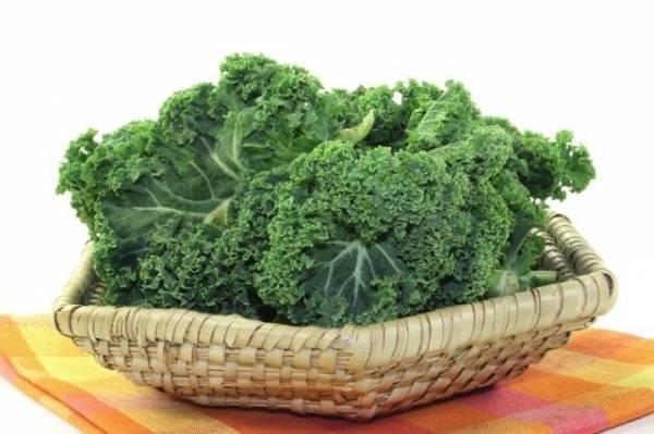 Употребление капусты кале: полезные свойства и противопоказания