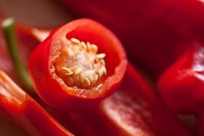 Проращивание семян перца на рассаду в домашних условиях