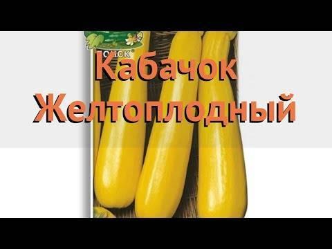 Сорт кабачков Желтоплодный