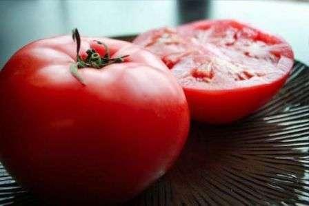 Лучшие и самые урожайные сорта помидоров для сибири в теплице