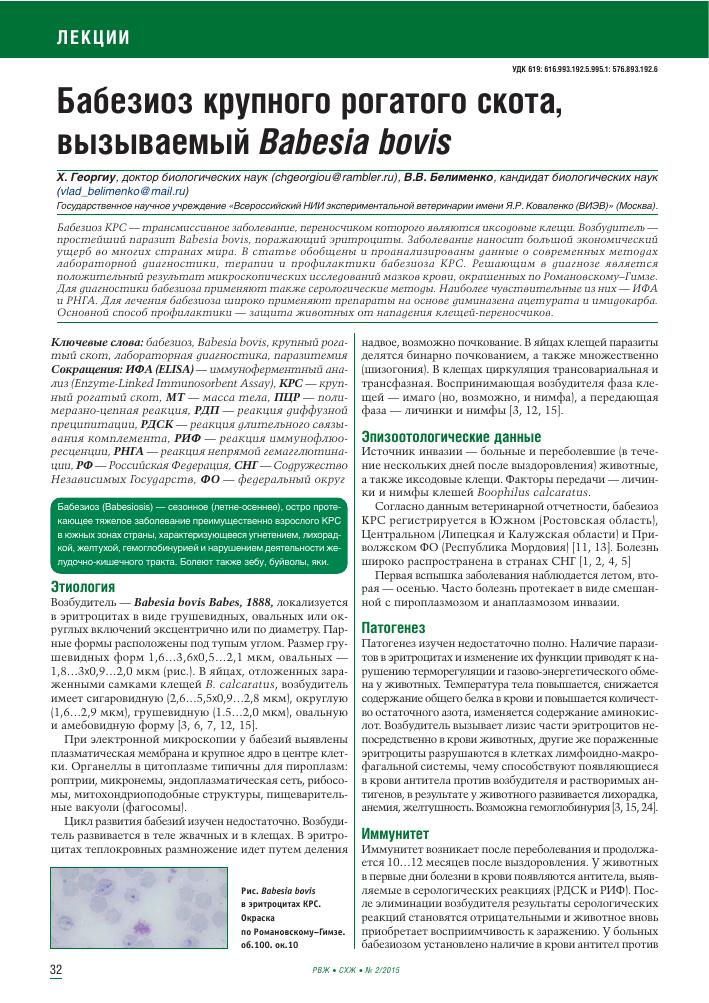 Анаплазмоз крупного рогатого скота (крс): симптомы и лечение, профилактика