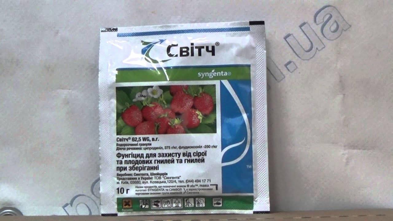 Препарат свитч – отзывы, состав фунгицида, аналоги, совместимость, применение для растений