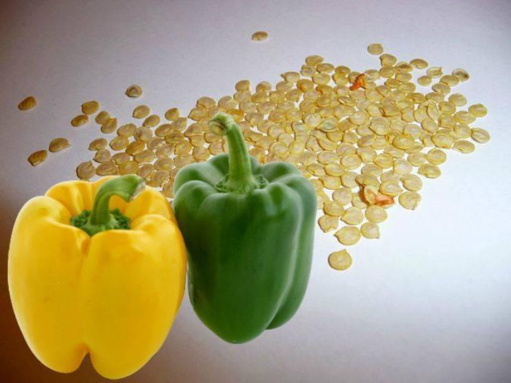 Когда сеять перец на рассаду: вот как вырастить здоровую рассаду перца в квартире.   красивый дом и сад