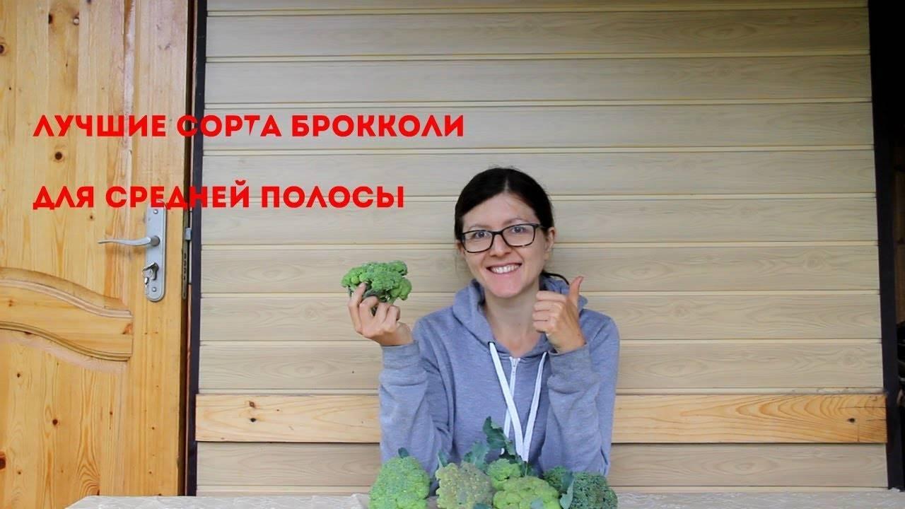 5 отличных раннеспелых сортов и гибридов брокколи