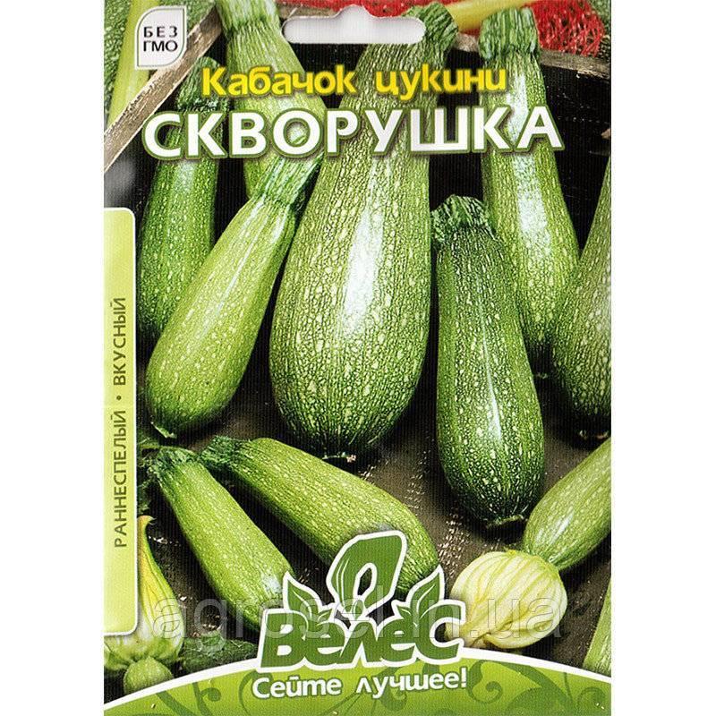 Кабачки — полезные овощи