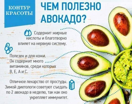 Рецепты блюд из авокадо. как приготовить быстро и вкусно для похудения, снижения холестерина, вегетарианцев, легкие на завтрак