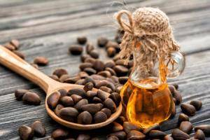 Лечебные свойства настойки из кедровых орехов