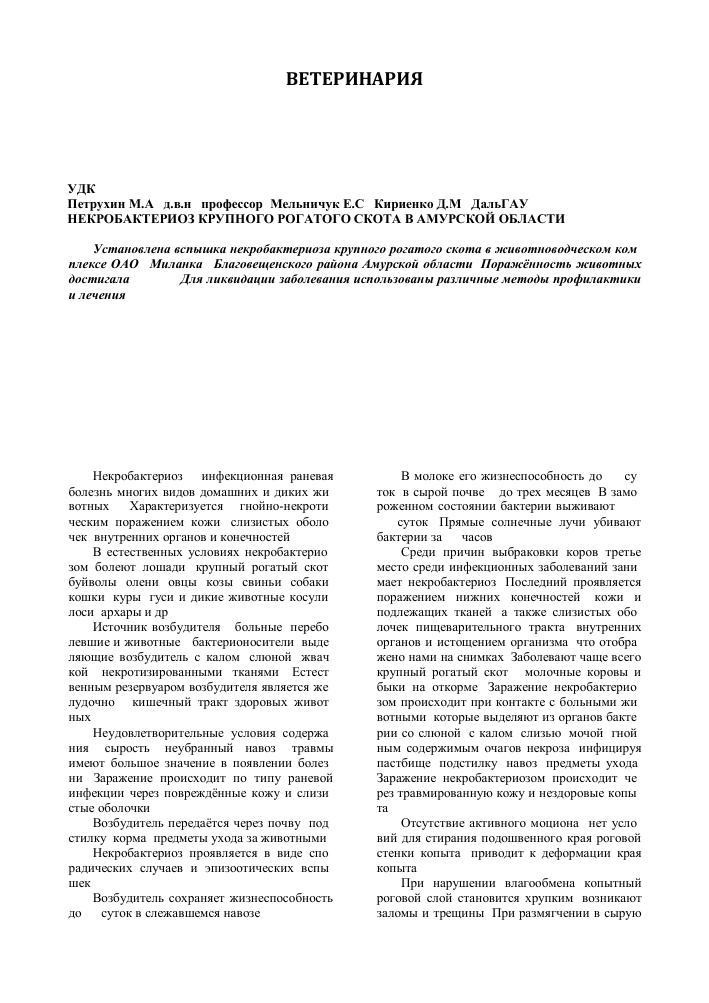 Некробактериоз крс, статьи nita-farm