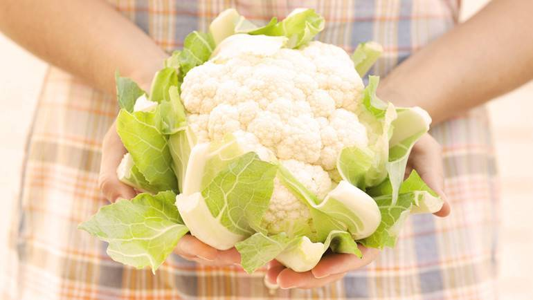 Цветная капуста – полезные свойства, калорийность, пищевая ценность