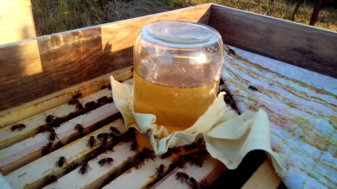 Поилки для пчел, как сделать самому из бутылки