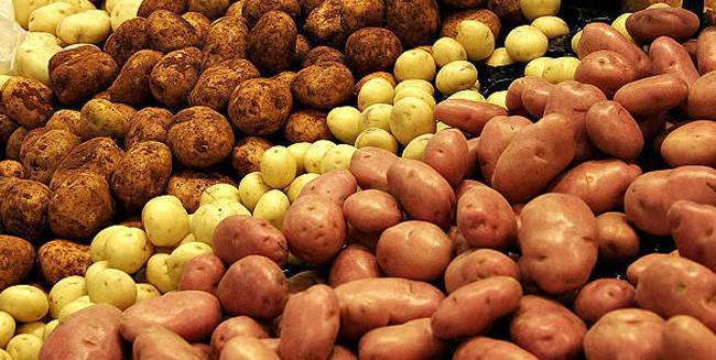Какие сорта картофеля выбрать для хранения