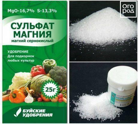 Сульфат магния как удобрение: инструкция по применению, состав