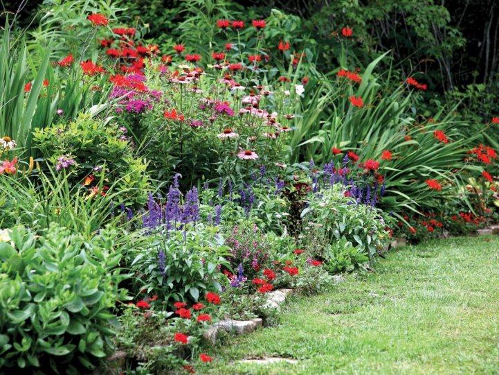 Миксбордеры из многолетников: особенности посадки и фото цветников | дом мечты