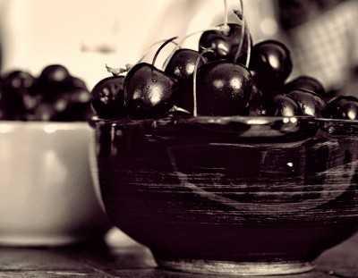 Вишня чернокорка: описание сорта, фото, вредители и опылители, особенности ухода