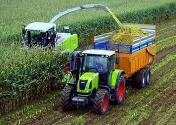Технология уборки кукурузы на зерно, уборка и хранение урожая кукурузы