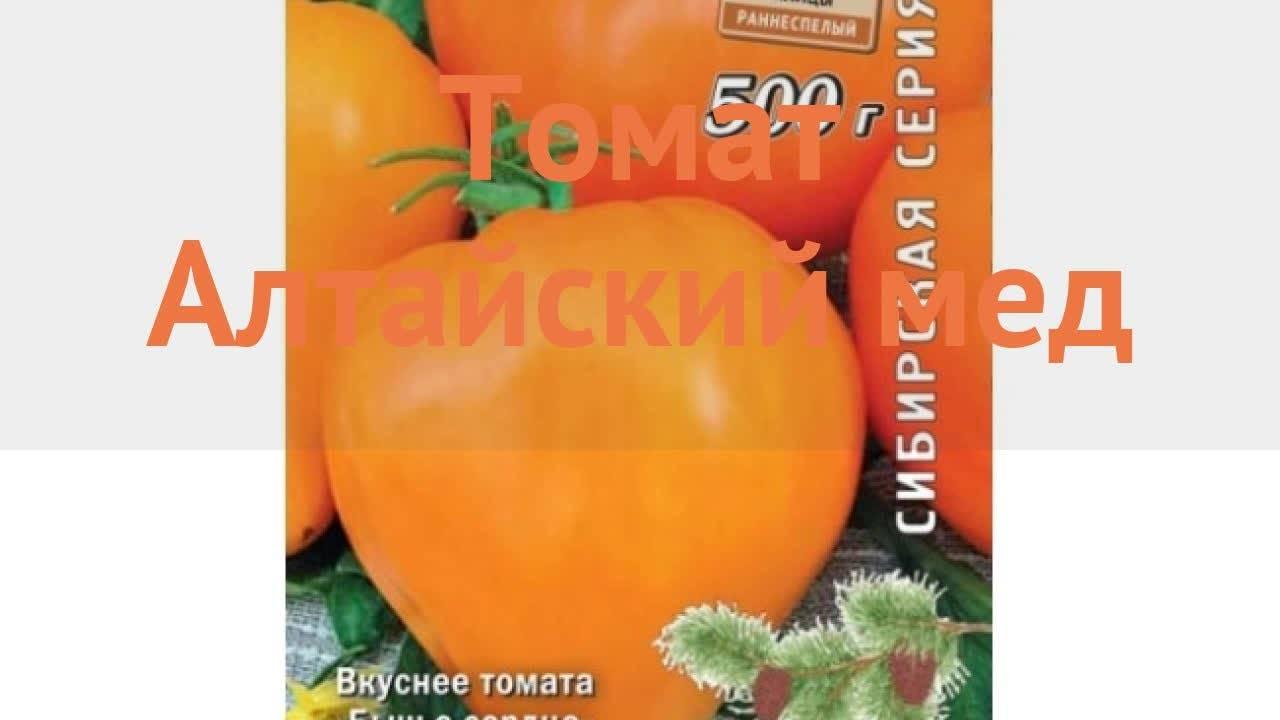 """Томат """"медово сахарный"""": характеристика и описание сорта помидор, выращивание, достоинства и недостатки, правильное хранение и борьба с вредителями"""