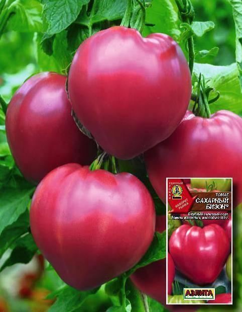 """Томат """"сахарный бизон"""": характеристика и описание сорта, советы по выращиванию и фото помидоров"""