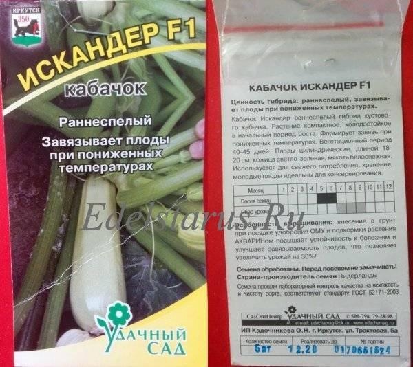 Кабачок сангрум f1 — описание сорта, фото, отзывы, посадка и уход