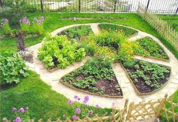 Красивый огород с грядками своими руками: 75 вариантов дизайна